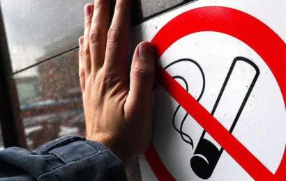Единым фронтом: правительство, силовики и учёные против бестабачного никотина и сетевого наркотрафика